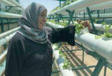 صورة اليونيسف تطلق مشروعاً للاكتفاء الذاتي في مخيم جرش