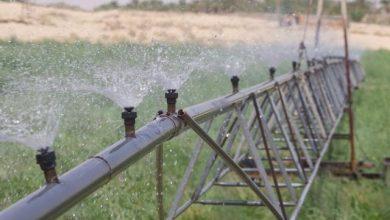 صورة عقد فعالية إقليمية عن محاسبة المياه