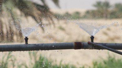 صورة تحسين كفاءة المياه المستخدمة في الزراعة في تونس